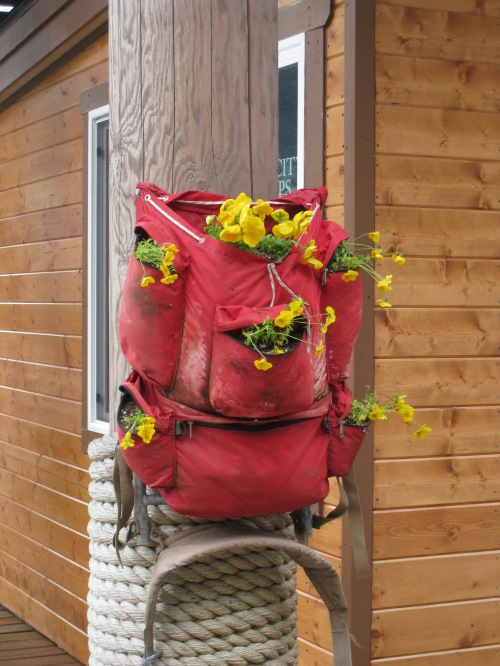 Backpack planter in Alaska